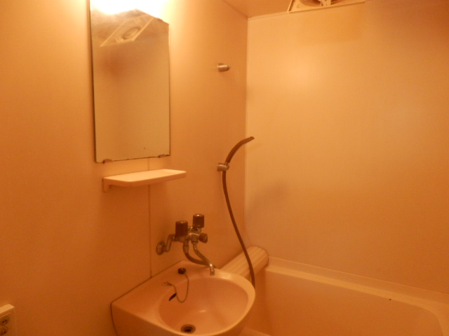 グリーンメゾン 102号室の洗面所