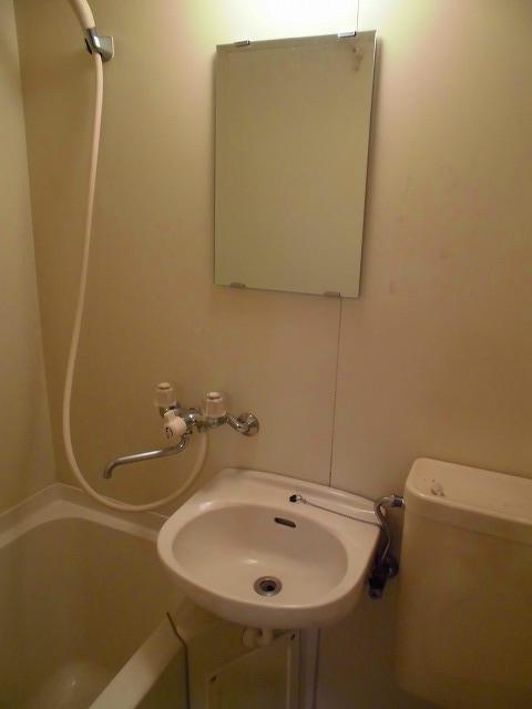 ライフピアグラフティー 203号室の洗面所