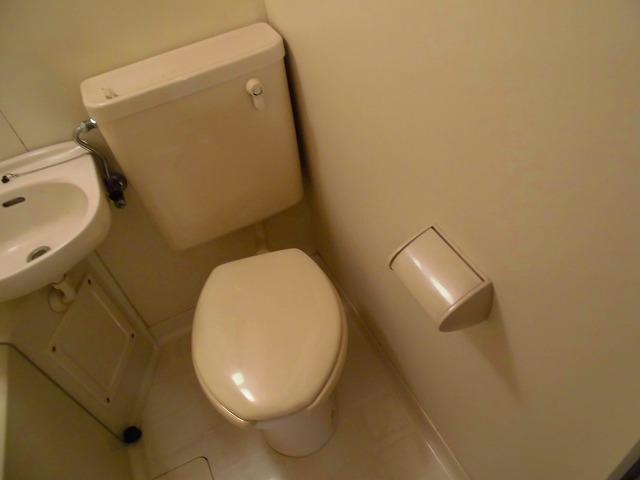 ライフピアグラフティー 203号室のトイレ