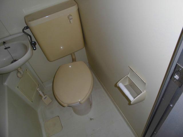ライフピアグラフティー 104号室のトイレ