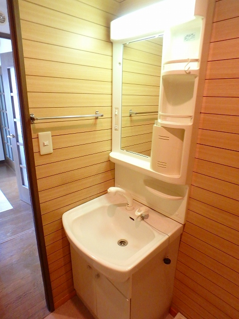 グランデ土橋Ⅱ 206号室の洗面所