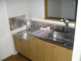 ロイヤルガーデン・アネシスC 102号室のキッチン