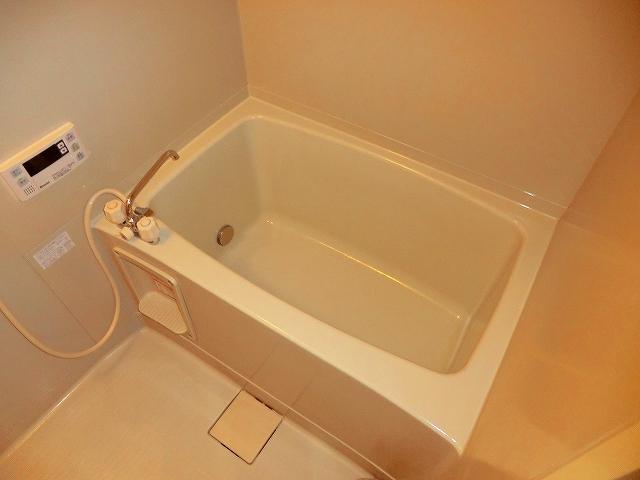 シャトーホソダA 203号室の風呂