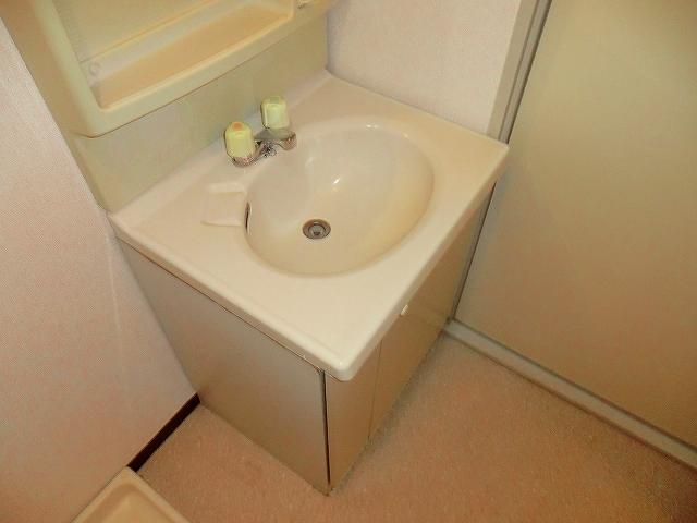 シャトーホソダA 203号室の洗面所