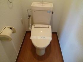 グレイスハイム新座 201号室のトイレ