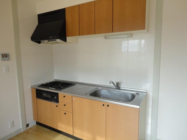 ドルソニオンA 102号室のキッチン