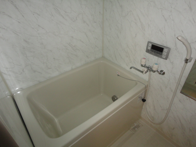ドルソニオンA 102号室の風呂