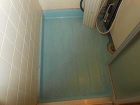 メゾン新井 202号室の風呂