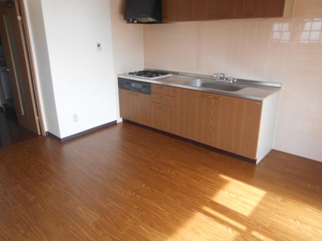 ゴールドハイツ渡辺 1005号室のキッチン