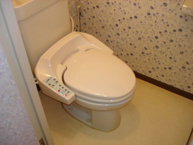 イエローハウス栄 501号室のトイレ