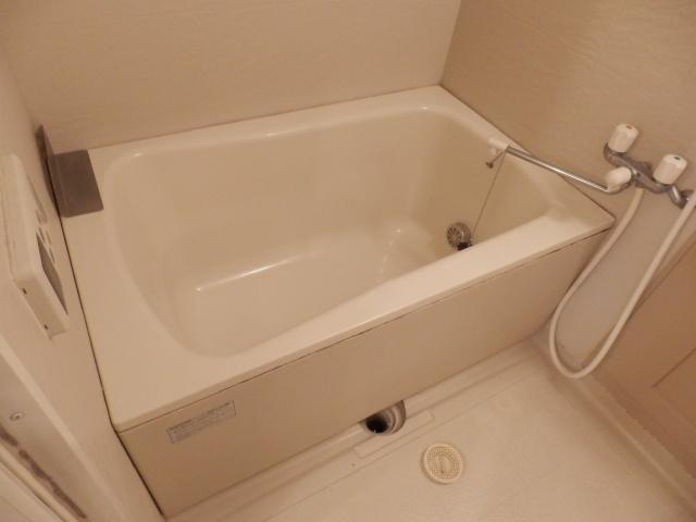 カーサ岩塚 302号室の風呂