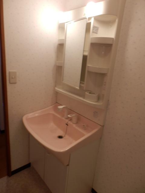 カーサ岩塚 302号室の洗面所