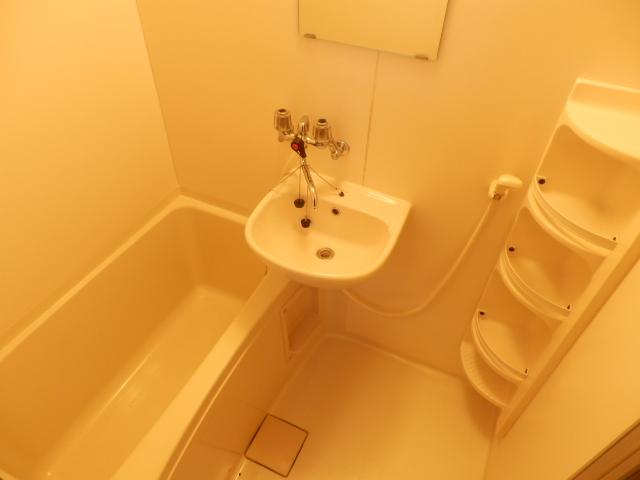 ヴィラ・パンテオン 104号室の洗面所