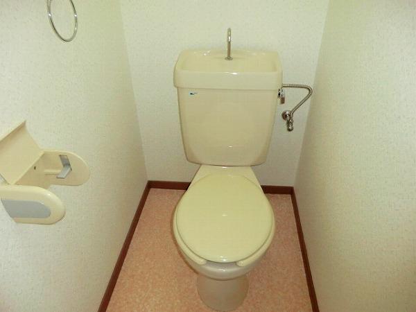 ハイム大樹 205号室のトイレ