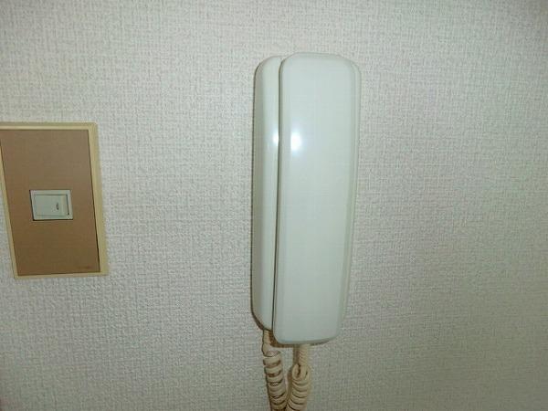 ハイム大樹 205号室のセキュリティ
