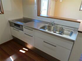 ヴィッラヴィスタ日野 202号室のキッチン