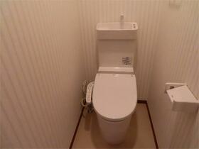 ヴィッラヴィスタ日野 202号室のトイレ