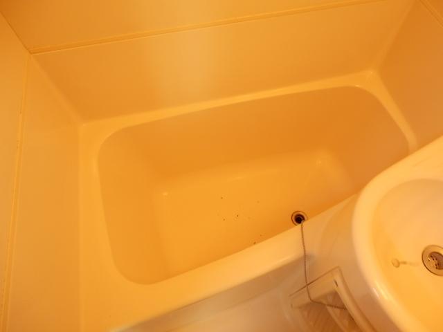 グリーンヒル上田 00205号室の風呂