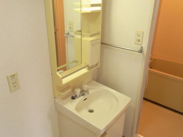 ラリーマンション 502号室の洗面所