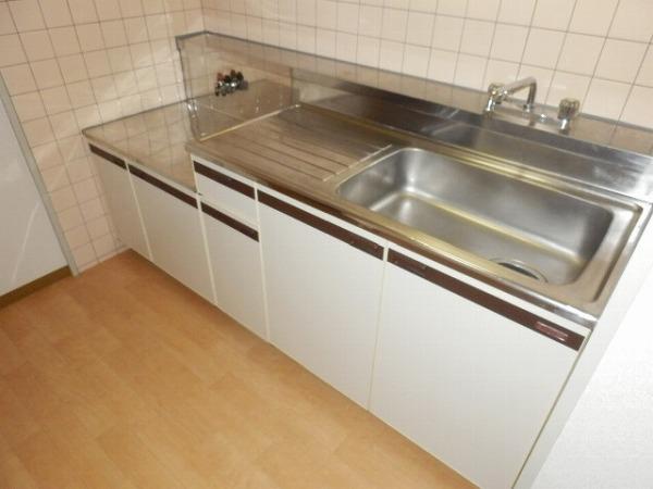 グリーンシャトル 301号室のキッチン