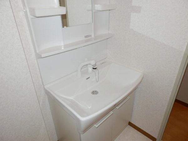 グリーンシャトル 301号室の洗面所