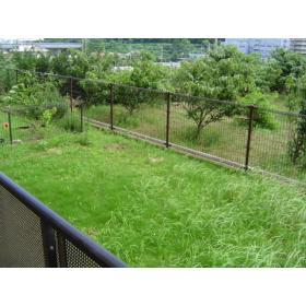 グリーンヒルあざみ野南 101号室の庭