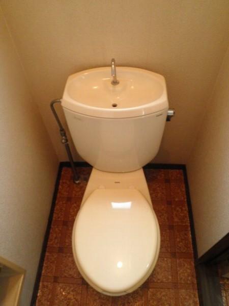 タウニィあけぼの B 101号室のトイレ