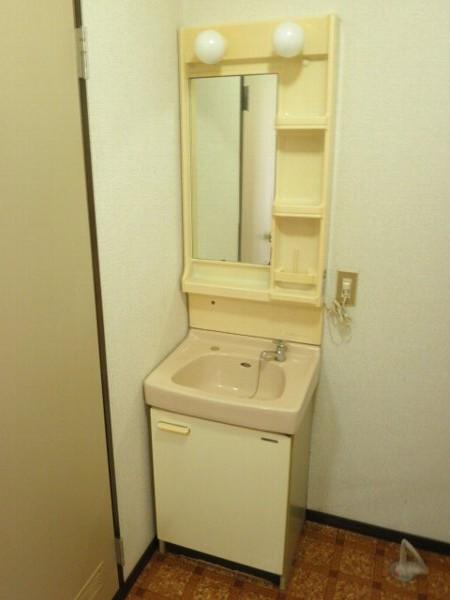 タウニィあけぼの B 101号室の洗面所
