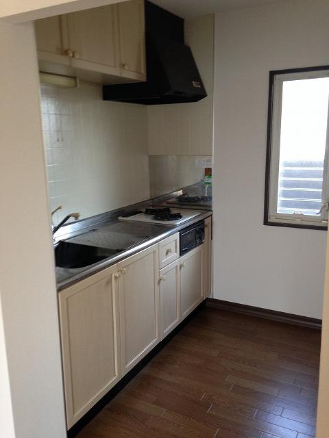 フレグランス花村A棟 102号室のキッチン