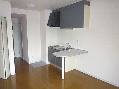 静清第3ハイツ 101号室のキッチン