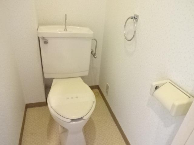 瑞江サングリーンビル 403号室のトイレ
