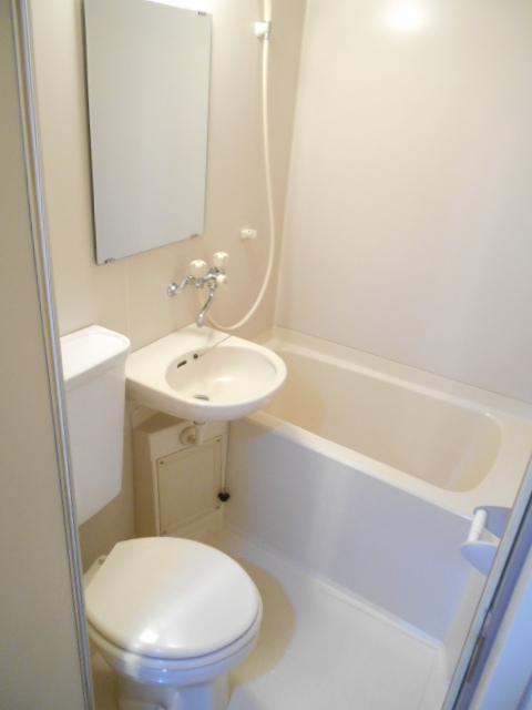 ブランニュー美しが丘 304号室の風呂
