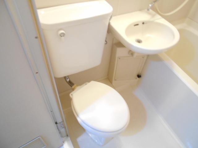 ブランニュー美しが丘 304号室のトイレ