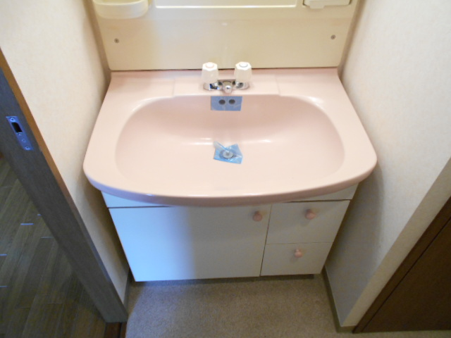 アーバンパーク市が尾 502号室の洗面所