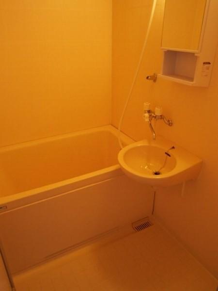 ハイツワタナベ 103号室の風呂