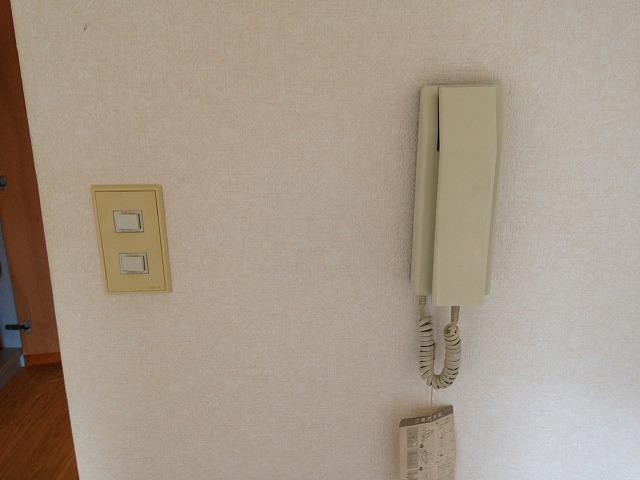 パーシモンハウス 302号室のセキュリティ