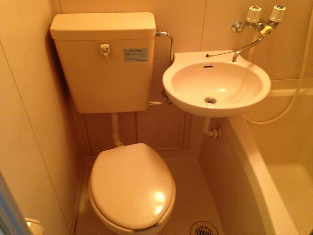 パーシモンハウス 302号室のトイレ