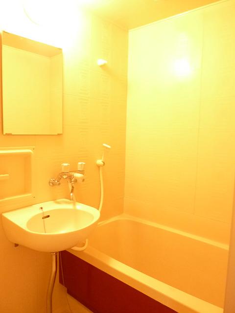 カーサアルティスタ 305号室の風呂
