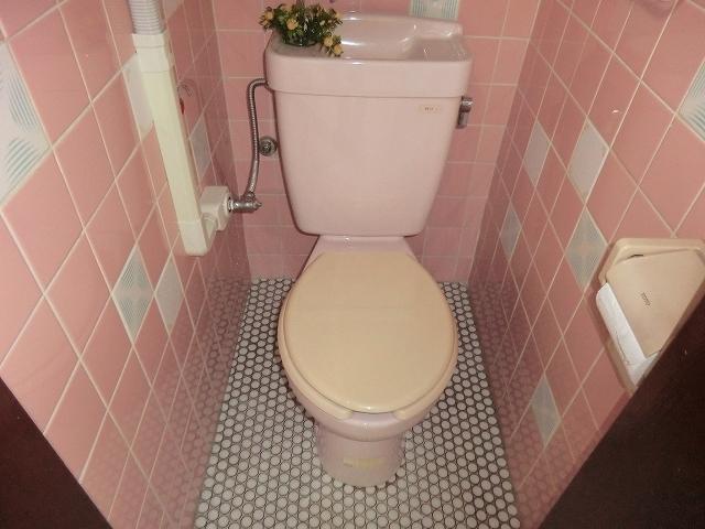 セントラルビル 405号室のトイレ