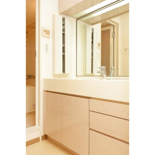K's新中野 0301号室の洗面所