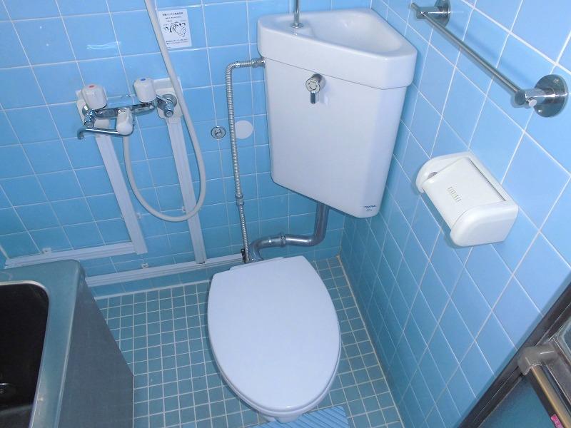 メゾンアミノ 303号室のトイレ