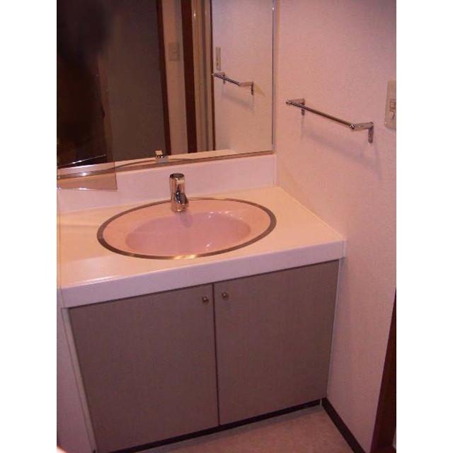 ラ スペランツァ都立家政 0211号室の洗面所