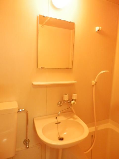 メゾンドココ 307号室の洗面所