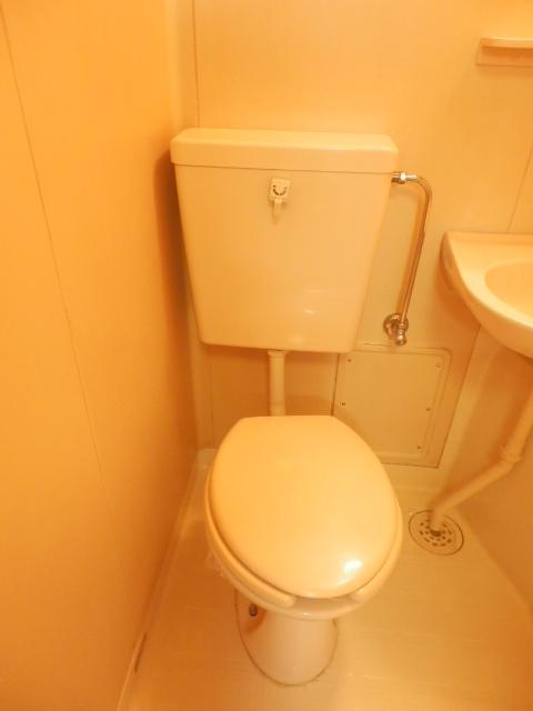 メゾンドココ 307号室のトイレ