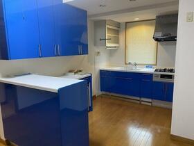 Pua-Honu 2F号室のキッチン