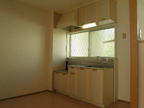 グリーンフラットB 103号室のキッチン