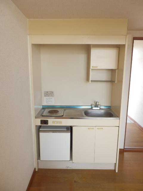 プラザ・ドゥ・ベルタ 205号室のキッチン