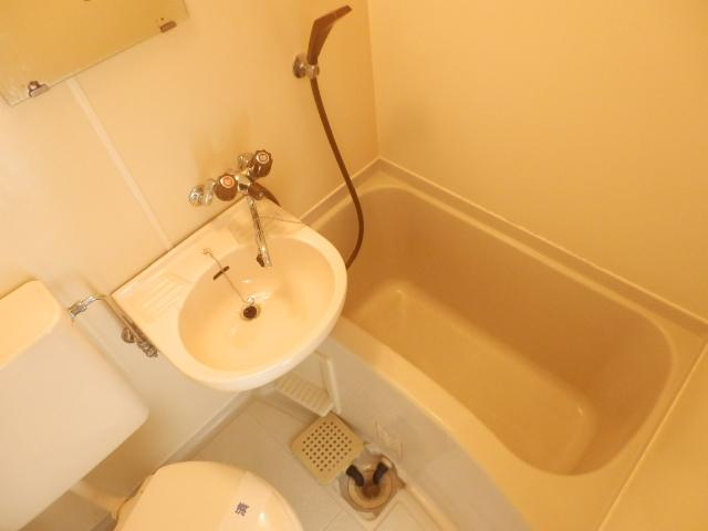 プラザ・ドゥ・ベルタ 205号室の風呂