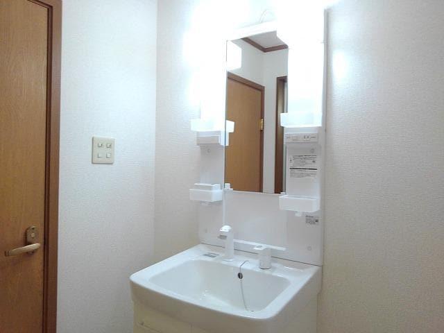 ヴィラ星の宮 02030号室の洗面所