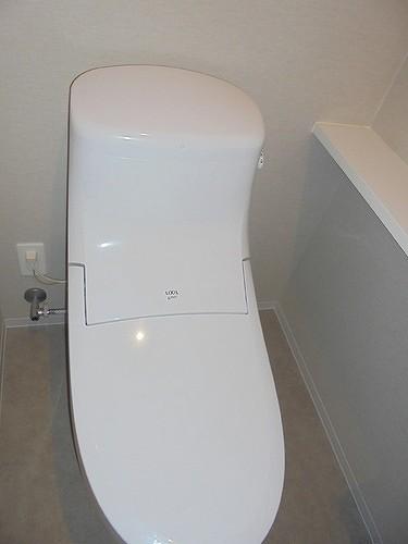 宇都宮PEAKS 309号室のトイレ